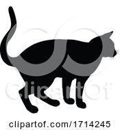 05/20/2020 - Silhouette Cat Pet Animal