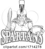 Poster, Art Print Of Spartan Trojan Gladiator Football Warrior Woman