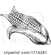 05/20/2020 - Sweet Corn Ear Maize Woodcut Etching Illustration