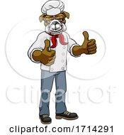 05/20/2020 - Bulldog Chef Mascot Thumbs Up Cartoon