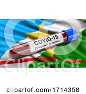 Brazilian State Flag of Roraima Waving in the Wind with a Positive Covid 19 Blood Test Tube by stockillustrations #COLLC1714358-0101