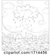 Spring Showers Rain Cloud