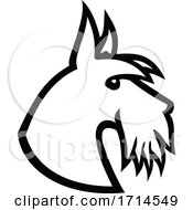Scottish Terrier Head Side Black And White