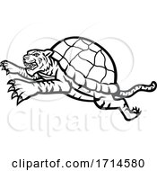 Turtle Tiger Leaping Side Black And White