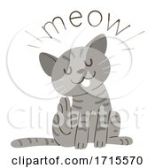 Cat Onomatopoeia Sound Meow Illustration