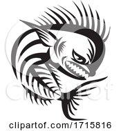 Angry Mahi Mahi Dolphinfish