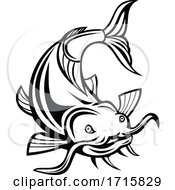 Catfish Or Wels Catfish Attacking Front Cartoon Black And White