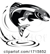 Black And White Trout Fish