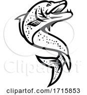 Jumping Pike Fish