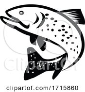 Black And White Jumping Brook Trout Fish