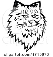 Head Of Siberian Forest Cat Mascot Black And White