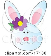 Happy White Bunny Rabbit Face With A Purple Flower By The Ear by Maria Bell