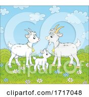 Poster, Art Print Of Goat Family