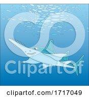 Swimming Sawfish Carpenter Shark