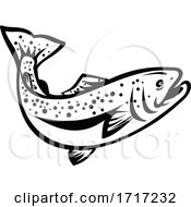 Speckled Trout Spotted Seatrout Or Cynoscion Nebulosus Jumping Up Retro Black And White