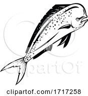 Mahi Mahi Or Common Dolphinfish Swimming Up Retro Black And White
