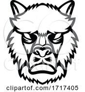 Angry Alpaca Or Llama Head Mascot Black And White