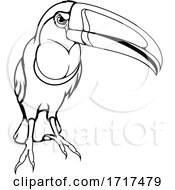 Toucan Bird Mascot In Black And White