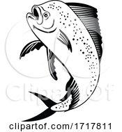 Dorado Dolphinfish Or Mahi Mahi Jumping Up Retro Black And White
