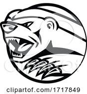 Angry Honey Badger Swiping Attacking Mascot Black And White