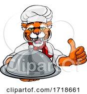 Poster, Art Print Of Tiger Chef Mascot Sign Cartoon Character