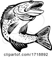 Walleye Pikeperch Pickerel Or Yellow Pike Jumping Up Retro Black And White