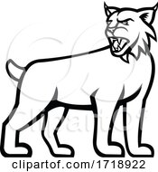 Bobcat Or Lynx Cat Standing Side View Mascot Black And White