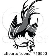 Junglefowl Cockerel Or Rooster In Fighting Stance Retro Black And White