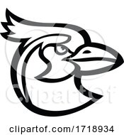Head Of Black Throated Magpie Jay Mascot Black And White