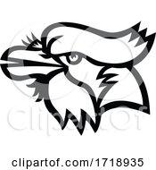 Head Of Blue Jay Head Mascot Black And White