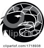 Head Of European Eagle Inside Handball Ball Mascot Black And White