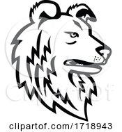 Shetland Sheepdog Or Shetland Collie Mascot Black And White