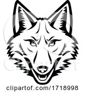 Head Of A Coyote Front View Mascot Black And White