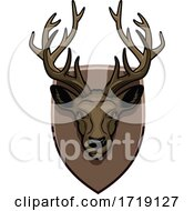 Hunting Sports Trophy Taxidermy Mounted Deer Head