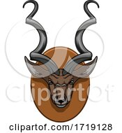 Hunting Sports Trophy Taxidermy Mounted Kudu Head