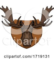 Hunting Sports Trophy Taxidermy Mounted Moose Head