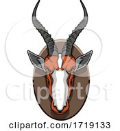 Hunting Sports Trophy Taxidermy Mounted Impala Head