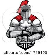 Poster, Art Print Of Knight Mascot