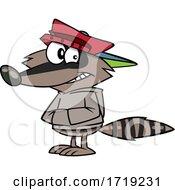 Cartoon Shifty Raccoon