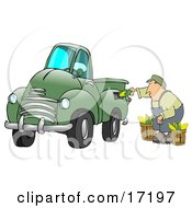 Man Crouching While Putting Ears Of Corn Into A Green Corn Powered Biodiesel Truck Clipart Illustration by Dennis Cox