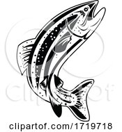 Columbia River Redband Trout Inland Redband Trout Or Interior Redband Trout Retro Black And White