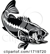 Largemouth Bass Diving Down Black And White Retro Woodcut