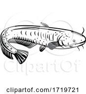 The Giant Lake Biwa Catfish Silurus Biwaensis Biwako Onamazu Retro Woodcut Black And White