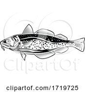 Atlantic Cod Gadus Morhua Or Codling Side View Retro Style Black And White