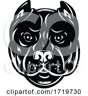 Head Of Pit Bull Or Pitbull Front View Retro Woodcut Black And White