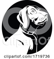 Head Of A German Shorthaired Pointer Dog Retro Black And White
