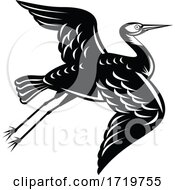 White Faced Heron Egretta Novaehollandiae Or White Fronted Heron Flying Retro Woodcut Black And White