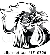 Poster, Art Print Of Rooster Jungle Fowl Or Cockerel Looking Up Retro Black And White