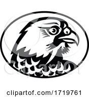 Head Of Peregrine Falcon Or The Duck Hawk Side Mascot Black And White
