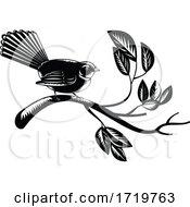 New Zealand Fantail Bird Rhipidura Fuliginosa Perching On Branch Retro Woodcut Black And White